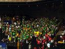 緑色のコスチュームに身を包んで騒いでいるリトアニアの応援団