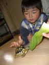 餌を喰うシロの甲羅を恐る恐る触るレン