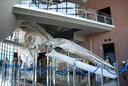 ド迫力のシロナガスクジラ 全身骨格標本