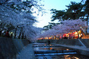 夕闇迫る夙川