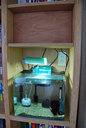 本棚に置いた35cm水槽のACアダプター類も上段に隠している