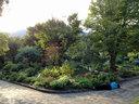 北山緑化植物園には寝転がって写真を撮る人が