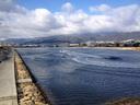 水路側から吹く風が冷た過ぎる