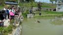 辻川山公園の池に河童が現れた