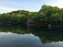 早朝の北山池