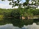 今朝も北山池はきれいだったが...