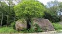 道の真ん中に鎮座する鷲林寺の夫婦岩