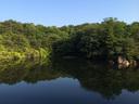 晴天の北山池は本当に美しい