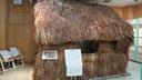 ヤシの葉で葺いた昔の民家