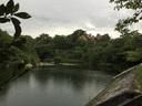 北山池に雨が降る