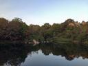 夕暮れ時の北山池