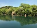 北山池も美しかった
