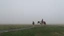 この景色の中の乗馬もまた乙なものだ