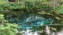 世にも不思議な神の子池