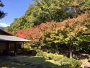 北山山荘の紅葉