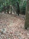 この季節は落ち葉が敷き詰められているので、下りは特に注意が必要