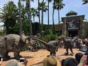 突如始まった恐竜たちの戦い