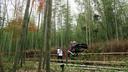 竹林を行く人力車