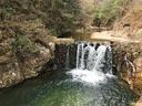 夏にドボンしたら楽しそうな小滝