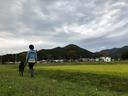 これぞ日本の里山の風景