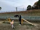 犬使い・マコちゃんに導かれて一本橋を渡る