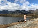 内湖と比良の山並み
