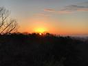 木々の向こうから顔を出す年頭の朝陽