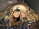 人類ガマンモスの骨で造った住居