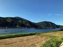 円山川へ帰ってきた