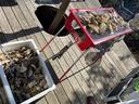 大量の牡蠣 美味かった