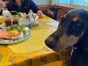 朝食も一緒に