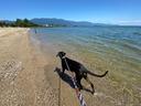 琵琶湖にやってきました