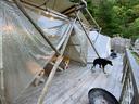 テントの隣にはダイニングスペース