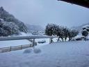 目覚めたらこの通り 車も雪にすっぽり