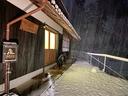 雪の夜に蠢く黒い獣